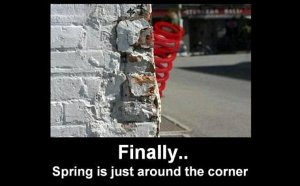 finally..spring-is-just-around-the-corner